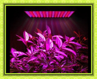 Wholesale Led Light Quad band W Led Lamp Plant Grow Light Planel Led Glow Lighting