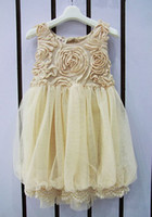 Wholesale Wholesales summer new Baby Kids Clothing Children s girls skirts dance lace rose flower dtutu party dress JO