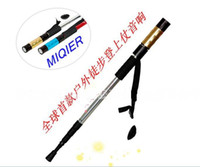 Wholesale Creative sticks acoustics cane acoustics music sticks music walking sticks walking sticks