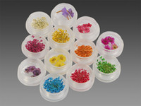 Wholesale 12 Pots Nail Art Dried Flowers Set For Nail Tips
