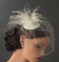 Wholesale 2016 Birdcage Veil Wedding Bridal Veil Feather Beaded Tulle Veil White Ivory ZJ146 Brial Veil for Bride