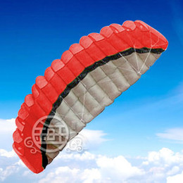 Free shipping ! ! hot sale 250 cm 2 Line Stunt Parafoil POWER Sport Kite+Four -color optional