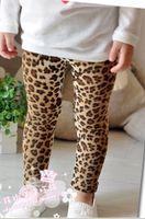 Wholesale Free Shiping Popular Baby Pants Baby Girls Boys Leggings Busha PP Pants Wear