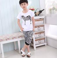 Boy 5T-6T Spring / Autumn Korean children's clothing 2013 summer new boy child baby zebra cotton short-sleeved + harem pants suit
