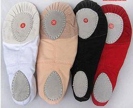 Wholesale Factory Special body dance shoes soft bottom shoes ballet practice shoes gym shoes Scratching shoes yoga shoes color