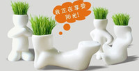 Wholesale Hot Sale New pc Creative Gift Plant Hair man Plant Bonsai Grass Doll Office Mini Plant Fantastic Home Decor pot seeds design