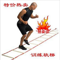 Wholesale Ladder For Football Training Rope Ladder Jump Grid Ladder Agility Ladder Ladder Of Energy iebay