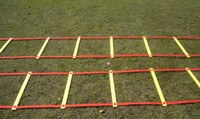 Wholesale High Quality New Arrival Ladder For Football Training Rope Ladder Jump Grid Ladder Agility Ladder Ladder Of Energy iebay