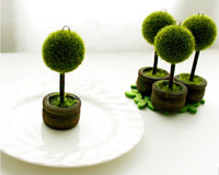 Wholesale Wedding Favors Green Potted Plants Place Card Holder For Green Theme Topiary Tree Place wedding decoration