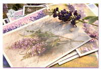 Paper   That touch of violet to Provence Lavender boxed paper memory Postcard Birthday Card Greeting Card 3 sets (1 sets of 30 Zhang)