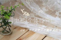 Wholesale Lace Fabric Cream Raw White Clothing Fabric For Wedding Dress Home Textiles Fabric Embroidery Gauze Cotton Yard