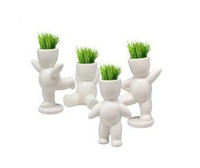 Wholesale Eco toys big white Hair man Plant Bonsai Mini Plant Grass Doll kinds of design Home and office furnishings