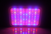 Wholesale 2013 New Design Band W LED Grow Light Spectrums IR Indoor Greenhouse System