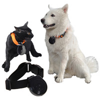 Wholesale Pet Cam New Pet s Eye View Camera for dogs cats Digital Clip On Collar Pet Video Camera Cam Pet Supply Newest