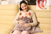 Wholesale Fashion Duplex Printing Pet Thermostat Heating Pad Warm Electric Blanket x40cm Free shipment