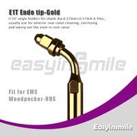 No No Manual E1T Golden Ultrasonic Scaler Endo File Holder Tip 120 Degree chuck compatible with EMS Woodpecker