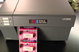 Wholesale LX900 inkjet chip for Primera color label printer