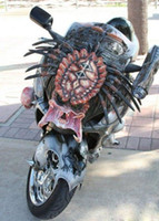 Wholesale Iron warrior