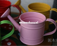 Wholesale Multicolour Metal Mini Watering Can Buckets Garden Tool Discount Miniature Keg Flower Pot Holder