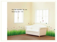 Wholesale funlife x40cm x16in Removable Green Grass Lady Bug Insect Art Mural Wall Sticker Decals Wall Border For Decoration FXAY768