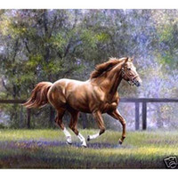 Wholesale High quality Handcraft Portrait Oil Painting Excellent horse x36 inch