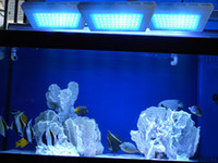 Wholesale Dimmable led aquarium light W Best coral reef fishing tank tow dimmers blue leds nm whtie led k