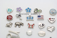 Traditional Charm Charms  260pcs assorted new different floating charm for glass locket,locket not included