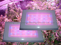 Wholesale New band led grow light W w chip leds for flowering plants amp blooming hydroponic system
