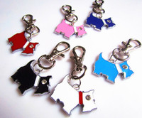 Wholesale alloy dog pet tag id card mixed color