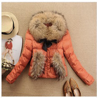 Wholesale Free Ship winter coat jacket color luxury large raccoon fur collar duck feather down coat ladies down Short jacket coat YH010