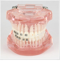 Cheap dental lab Best dentsply