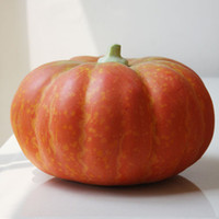 Wholesale New arrival child photography props artificial fruits and vegetables home accessories pumpkin props