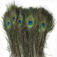 feathers - Bulk Peacock Feathers Natural Peacock Tail Feathers quot cm Peacock Feathers Plume