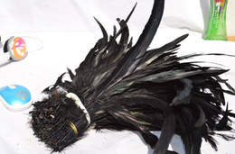 Free shipping Wholesale 100pcs lot 12-14inch black Coque feather rooster tail Feather cock feather for Costumes