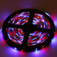 Wholesale 50m Non Waterproof led m V Flexible LED Strip Light RGB Rope Light with Keys controller
