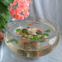 Wholesale Transparent big Medium circle glass fish tank goldfish bowl hydroponics vase