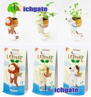 Cheap Ceramic Novelty Best ECO Friendly  Mini Plants