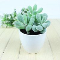 Wholesale Cactus bonsai mini bonsai artificial bonsai artificial flower pot bowyer flower