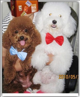 Wholesale Free shiping Dog Neck Tie Dog Bow Tie Cat Tie Pet Grooming Supplies Pet Headdress Flower WY142