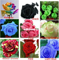 Wholesale 9 COLORS SEEDS ROSE SEEDS SEEDS EACH COLOR WITH FULLY SEALED BAG WITH SOWING INSTRUCTION ONLY