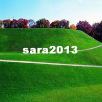 Wholesale Lawn Seed Grass Seeds Fresh Green Soft Runner Natural Plant