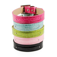 Wholesale 2013 New Dog Christmas Gifts Dog Collar Personalized Croc Collar DIY Pet Collar