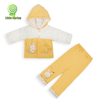 Spring / Autumn rabbit coat - Autumn Winter Baby girl Thick cotton padded clothes Rabbit coat little rabbit coat suit Hooded jacket trousers set