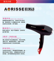Wholesale Home hair dryer thermostat Mute Power Hair salon hair dryer hair dryer hotel