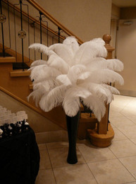 Wholesale Free shipping 100pcs lot 18-20inch(45-50cm) White ostrich feathers for Wedding table centerpiece feather centerpieces home decor