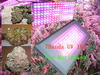 Wholesale 400 watt led grow lights w led grow light full spectrum bands for growing marijuana cannabis led plant grow light