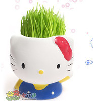 20pcs lotWholesale Supply KT cat grass doll grass planting g...