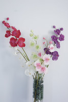 Wholesale Express CM PU Latex Phalaenopsis Flower Artificial Real Touch High Simulation Home Decor Color Option YR