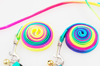 Wholesale 50 New arrivals Hot sales Rainbow Colors Design Small pet Dog and Cat Pet Collar Traction Rope Leash