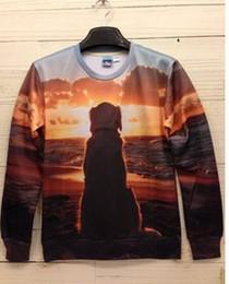 Wholesale 2013 Winter Women Men Space Print Galaxy Hoodies Sweaters Pullovers panda tiger cat Animal D Sport Sweatshirt Tee T Shirt B2015